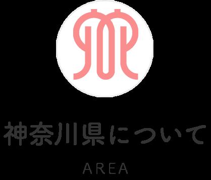 神奈川県について