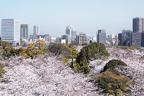 福岡県の風景